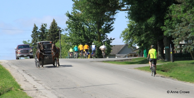 28941 Cyclists with Mennonite Buggy-002