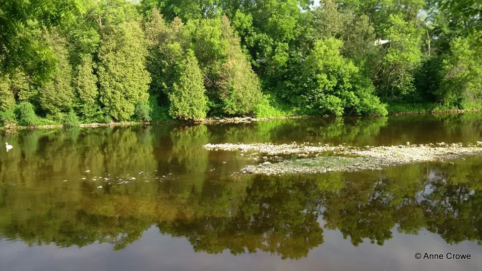 Grand River Elora