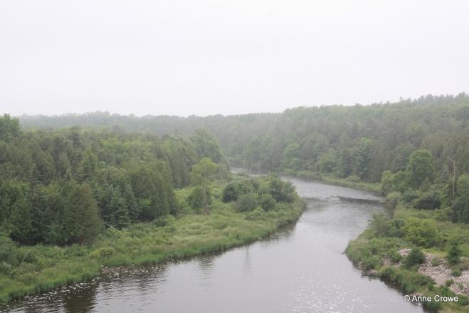 Grand River, Shand Dam