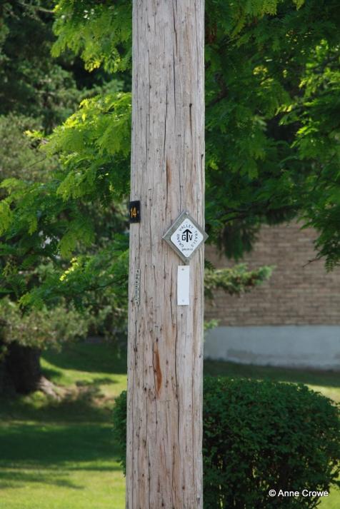 GVT Trail Sign