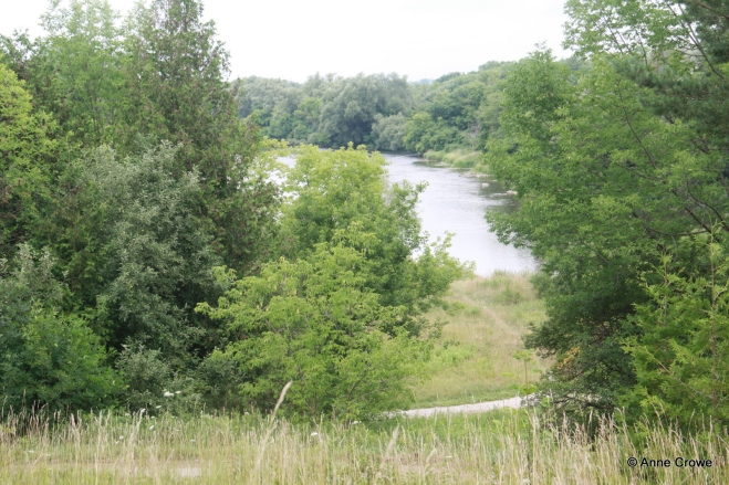 Grand River-001