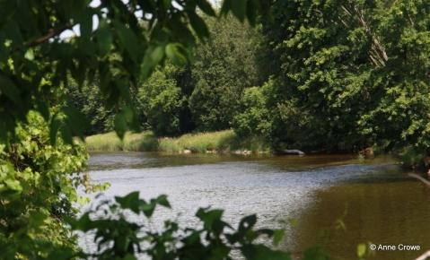 Grand River 1