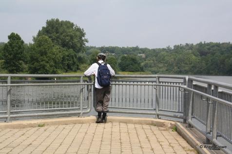 Wilkes Dam