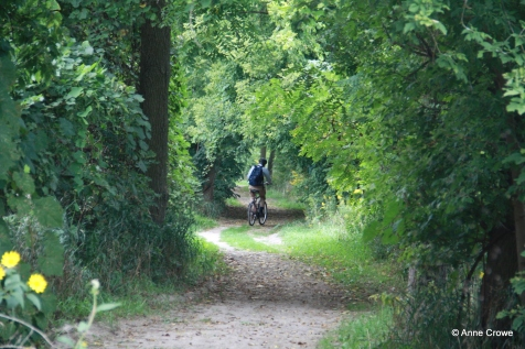 Cycling Riverside 2-001