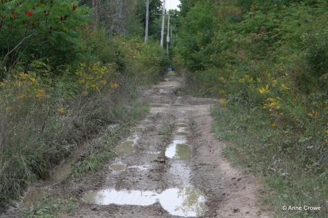 Muddy Trail-001