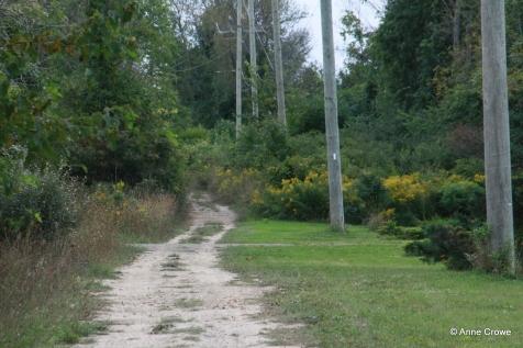Muddy Trail-003